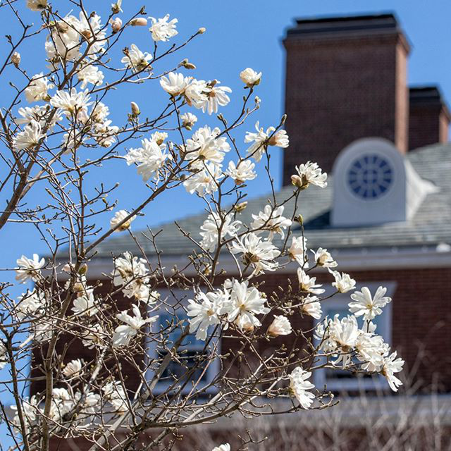 Longfellow Hall in spring